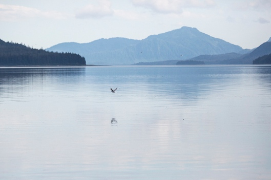 Reflected in the waters of the Inside Passage.
