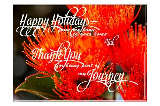 Starring the Australian Red Flowering Gum.