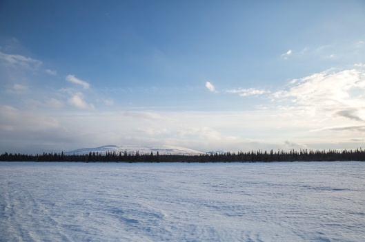 Distant land across the frozen lake from the sled.