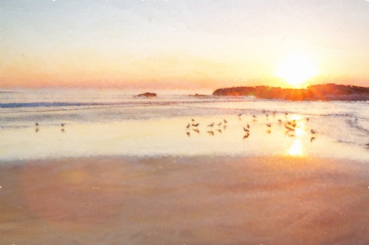 A sunrise image (with seagulls) taken into Topaz Impressions and one of my textures added. Very light and bright.
